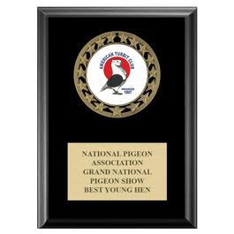 RS14 Fair, Festival & 4-H Medal Award Plaque - Black Finish
