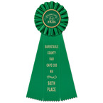 Ideal Fair, Festival & 4-H Rosette Award Ribbon