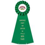 Ideal Fair, Festival & 4-H Rosette Award Ribbon