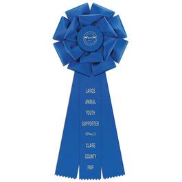 Preston Fair, Festival & 4-H Rosette Award Ribbon