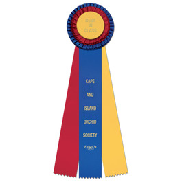 Chester Fair, Festival & 4-H Rosette Award Ribbon