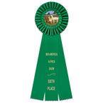 Shannon Fair, Festival & 4-H Rosette Award Ribbon