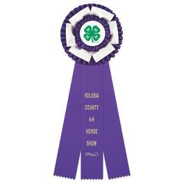 Dutchess Fair, Festival & 4-H Rosette Award Ribbon