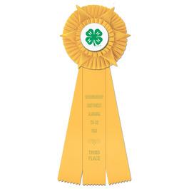 Hampshire Fair, Festival & 4-H Rosette Award Ribbon