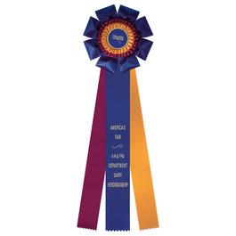 Wellfleet Fair, Festival & 4-H Rosette Award Ribbon