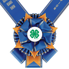 York Fair, Festival & 4-H  Award Sash