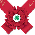 Bainbridge Fair, Festival & 4-H Award Sash