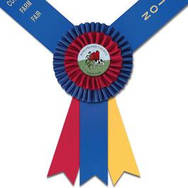 Knighton Fair, Festival & 4-H  Award Sash