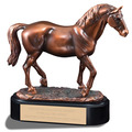Horse Fair, Festival & 4-H Award Trophy