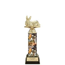 "11"" Black HS Base Fair, Festival & 4-H Award Trophy"