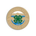 Fair, Festival & 4-H Lapel Pins - Soft Enamel