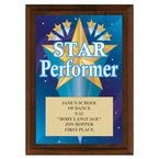 Star Performer Award Plaque - Cherry Finish