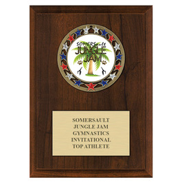 RSG Medal Gymnastics, Cheer & Dance Award Plaque - Cherry Finish