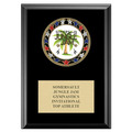 RSG Medal Gymnastics, Cheer & Dance Award Plaque - Black Finish