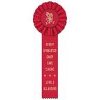 Ideal 1 Gymnastics, Cheer  & Dance Rosette Award Ribbon