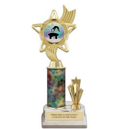 """10"""" White HS Base Gymnastics, Cheer & Dance Award Trophy w/ Trim & Insert Top"""