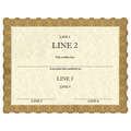 Custom Horse Show Award Certificates - Classic Gold Design