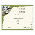Custom Full Color Horse Show Award Certificate - Combined Training Design