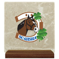 Large Tumbled Stone Horse Show Award Plaque w/ Walnut Base