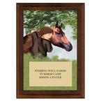 Horse & Child Horse Show Award Plaque - Cherry Finish