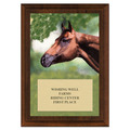 Horse Head Award Plaque - Cherry Finish