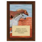 Run Free Horse Show Award Plaque - Cherry Finish