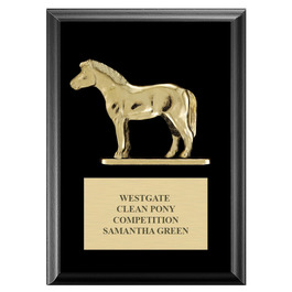 Pony Horse Show Award Plaque - Black Finish