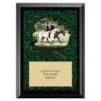 Enjoy the Ride Horse Show Award Plaque - Black