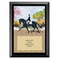 Extended Trot Award Plaque - Black