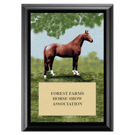 Full Horse Horse Show Award Plaque - Black