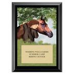 Horse & Child Horse Show Award Plaque - Black