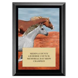Run Free Horse Show Award Plaque - Black