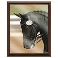Full Color Horse Show Award Plaque - Cherry Finish w/ Acrylic Overlay