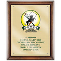 Full Color Horse Show Award Plaque - Espresso w/ Gold Plate & Acrylic Overlay