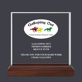 Square Acrylic Horse Show Award Trophy w/ Walnut Base