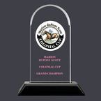 Arch Acrylic Horse Show Award Trophy