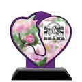 Custom Shape Birchwood Horse Show Award Trophy w/ Black Base