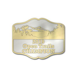 Bright Nickel and Gold Horse Show Award Belt Buckle