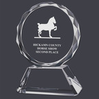 Optical Crystal Horse Show Award