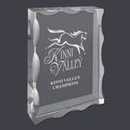 Optical Crystal Horse Show Award