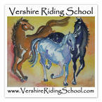 Square Horse Show Window Decal