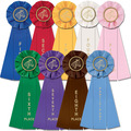 Stock Single Horse Show Empire Rosette Award Ribbon