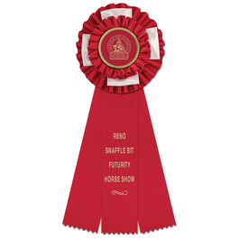 HORSE TROPHY  RED TROPHY HORSE AWARD  HORSE SHOW
