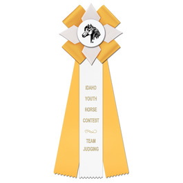 Dorset Horse Show Rosette Award Ribbon