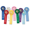 Stock Gymnastics Rosette Award Ribbon
