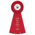 Luxury School Rosette Award Ribbon