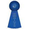 Newport School Rosette Award Ribbon
