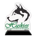 Birchwood Custom School Award Trophy w/ Black Base