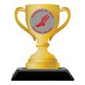 Birchwood Loving Cup School Award Trophy w/ Black Base