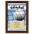 Volleyball Award Plaque - Cherry Finish